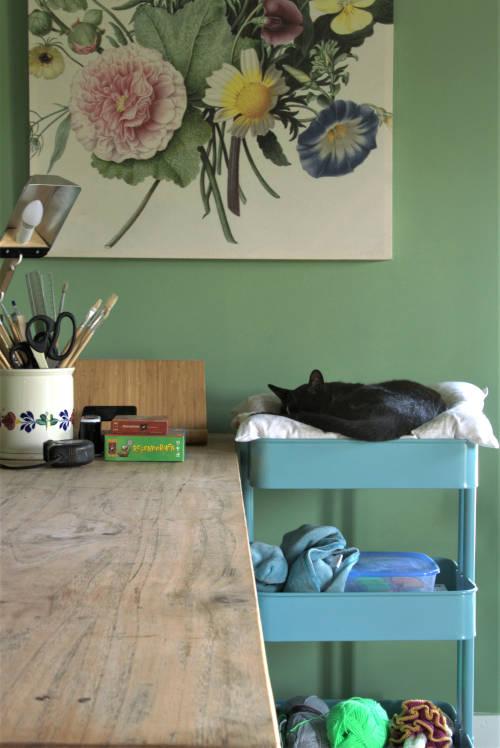 Kleuradvies, woonboerderij, wehl, groene muur