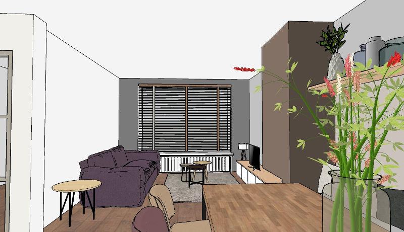 Indelingsplan, woonkamer, openhaard, 3d sketchup ontwerp, eethoek, interieurontwerp